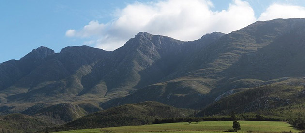 The Town of Swellendam