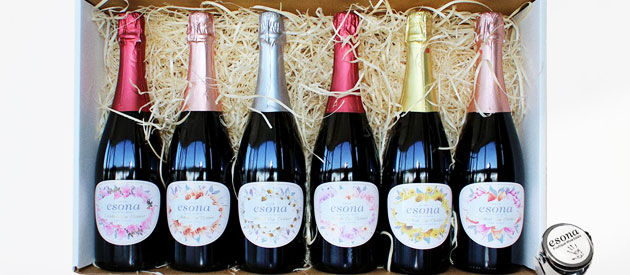 ESONA BOUTIQUE WINE ESTATE, ROBERTSON