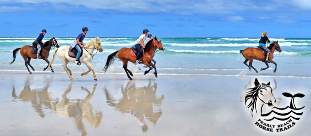 GANSBAAI & PEARLY BEACH HORSE TRAILS