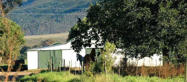 THE LISMORE COTTAGE, SWELLENDAM