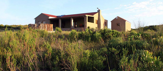 felicita, wedding venue, hermanus, stanford valley, self catering accommodation, farm accommodation, romantic getaway, function venue, overberg, western cape