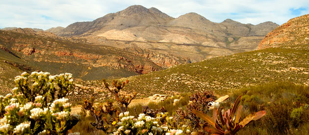 Prince Albert is situated in the Great Karoo in the Western Cape Province of South Africa.