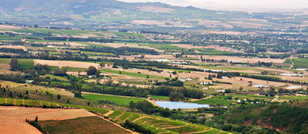 Paarl, in the Western Cape province of South Africa.